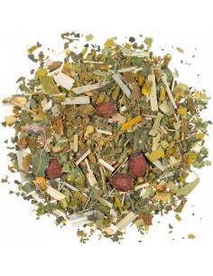 Energy Tea mit Ginkgo & Ginseng