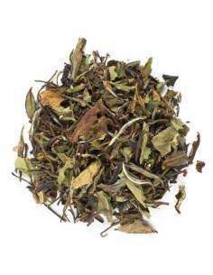Weißer Tee - Weisser Mangotraum